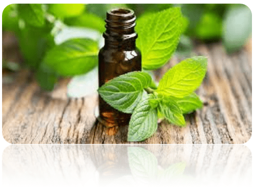 Essential Oils examples
