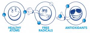 harmful free radicals