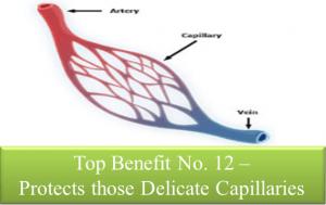 Capillary Protection
