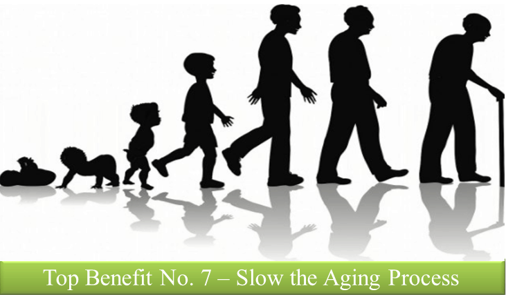 Aging Process Slowed