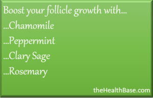 Essential oils to grow back hair